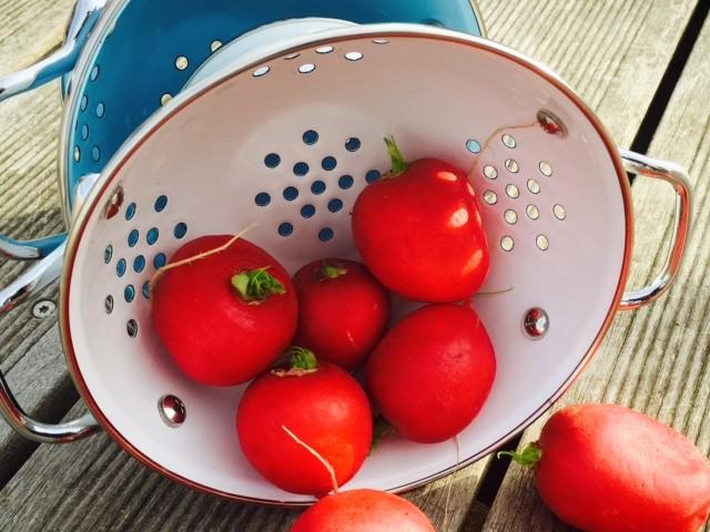 Radieschen-Erdbeer Granita mit Schnittlauch-Kren Topping