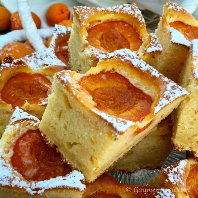 Marillen-Kuchen 2