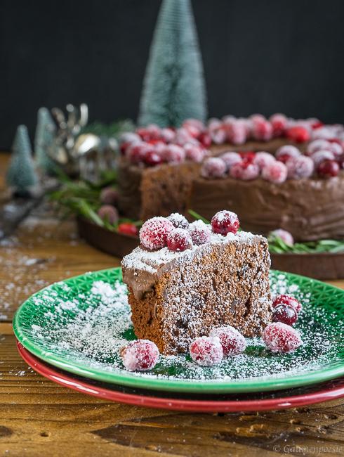 Schokoladen-Portwein-Kuchen mit sparkling Cranberries 3